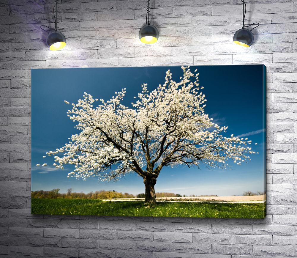 """Картина """"Цветущее дерево весной"""""""