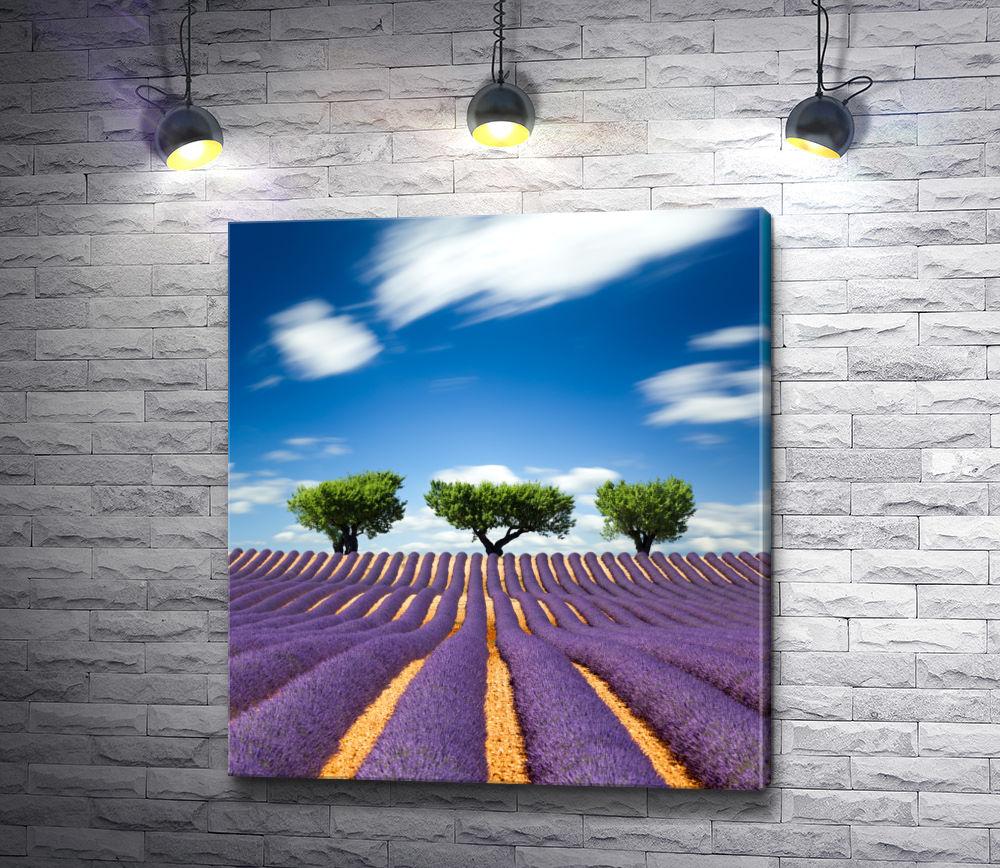 """Картина """"Три дерева на фоне лавандового поля"""""""