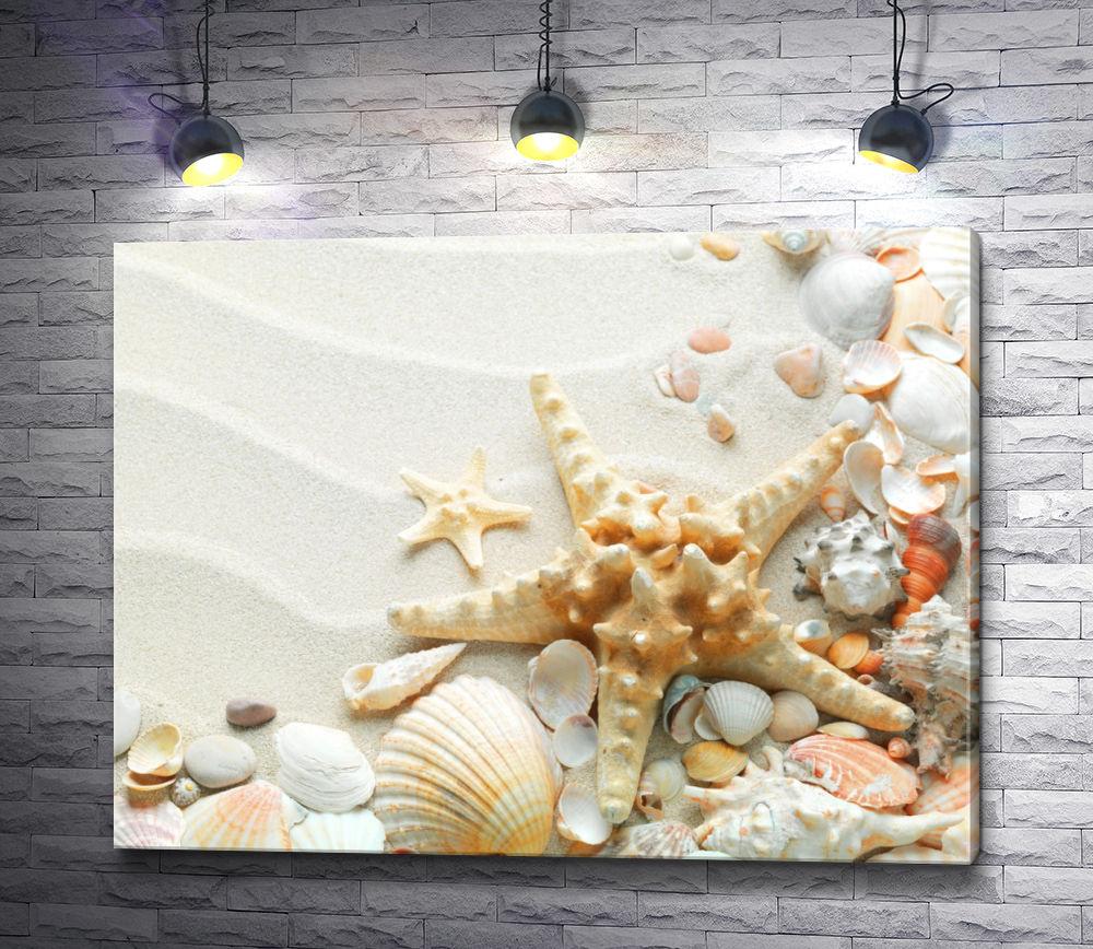 """Картина """"Морские ракушки на белом песке"""""""