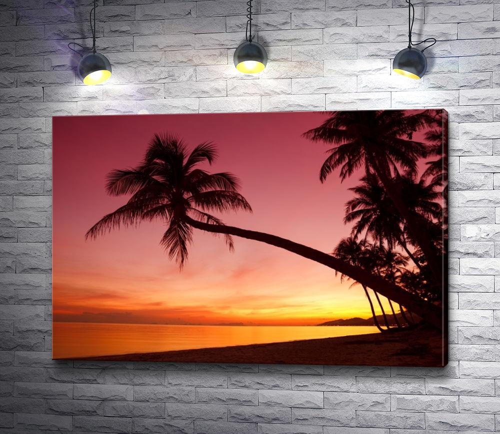 """Картина """"Пальмы и закат в тропиках"""""""