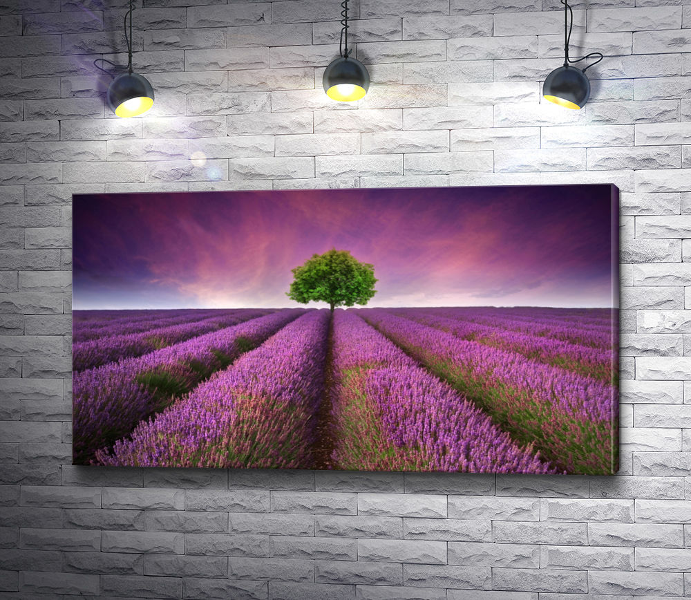 """Картина """"Лавандовое поле с деревом"""""""