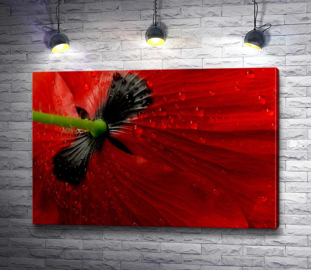 """Картина """"Бутон красной розы. Макросъемка"""""""
