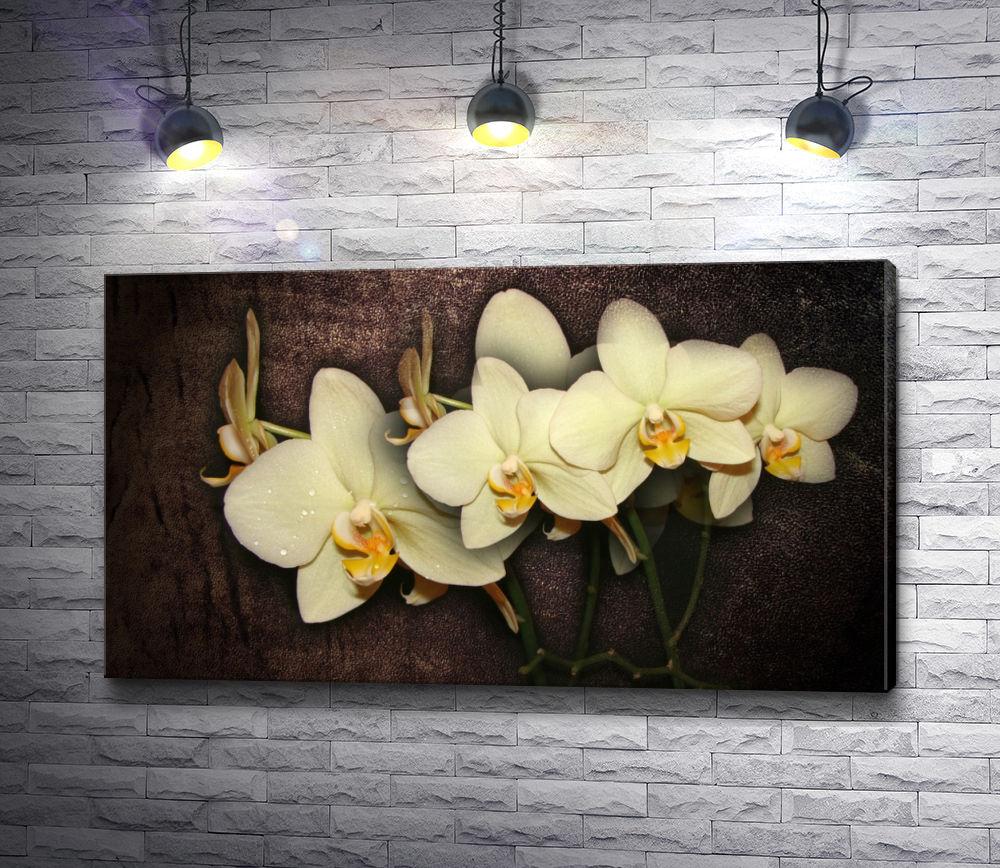 """Картина """"Белоснежные орхидеи"""""""