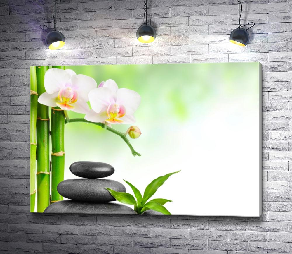 """Картина """"Орхидеи, бамбук и камни спа"""""""