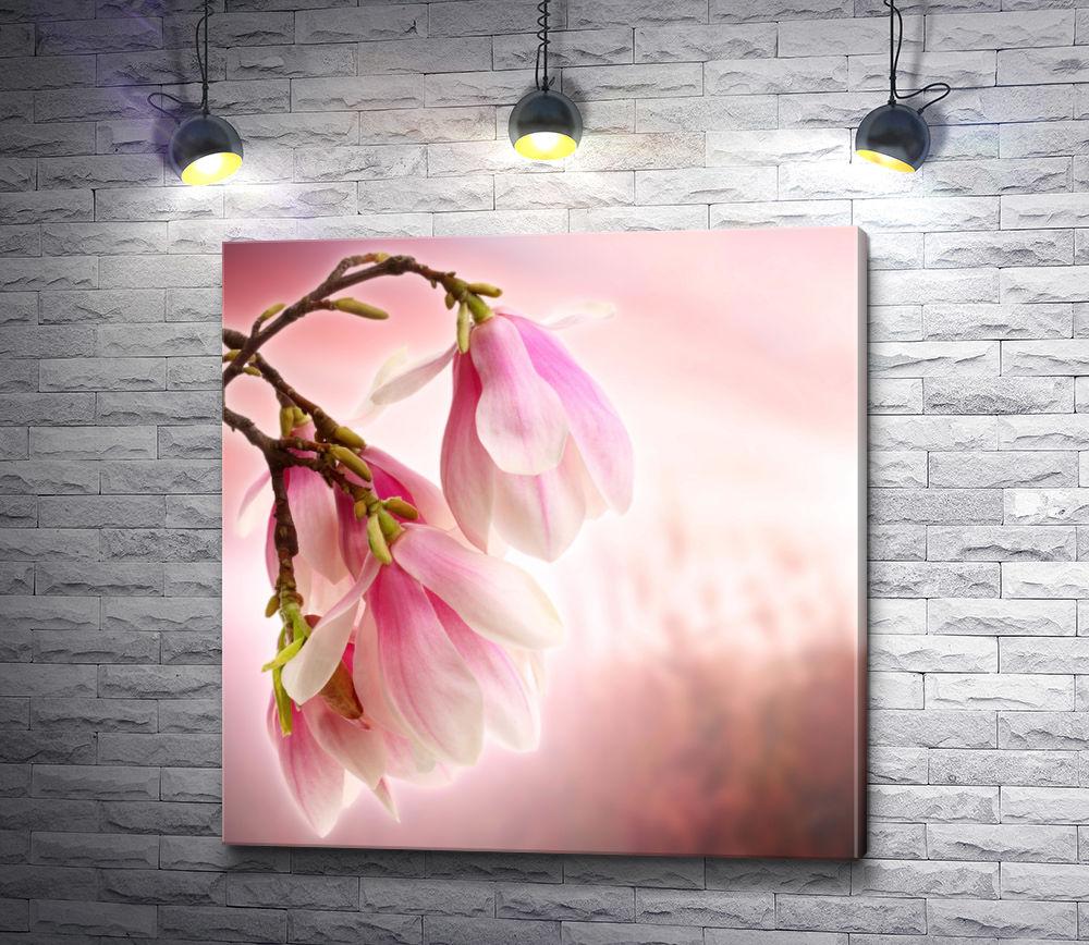 """Картина """"Легкие светло-розовые цветы"""""""