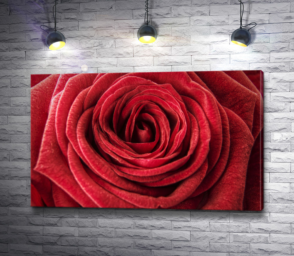 """Картина """"Роскошный бутон красной розы"""""""