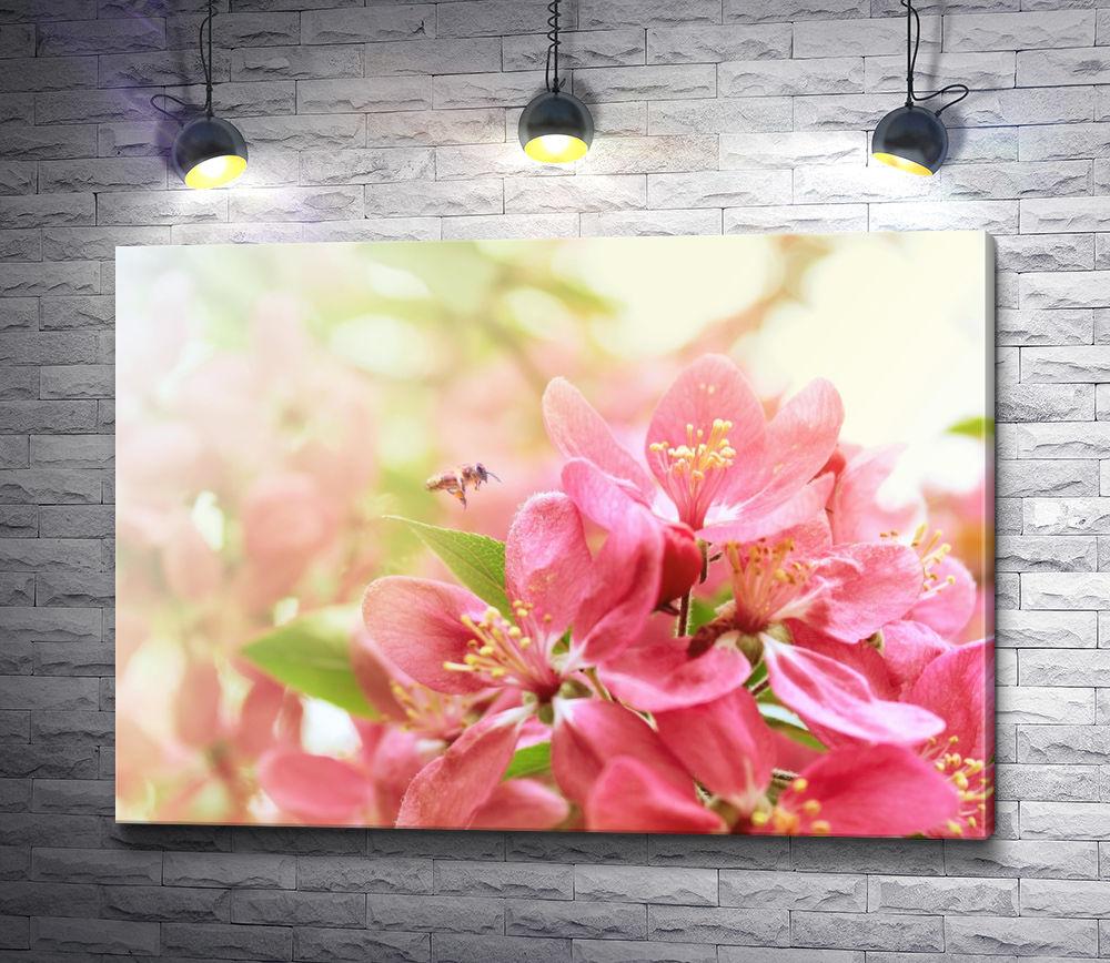 """Картина """"Весенние цветы. Макросъемка"""""""