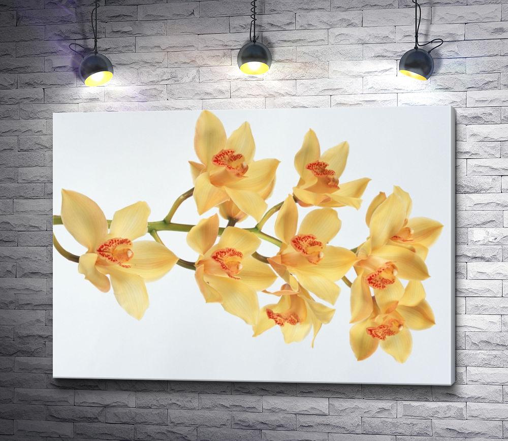 """Картина """"Желтые цветы над гладью воды"""""""