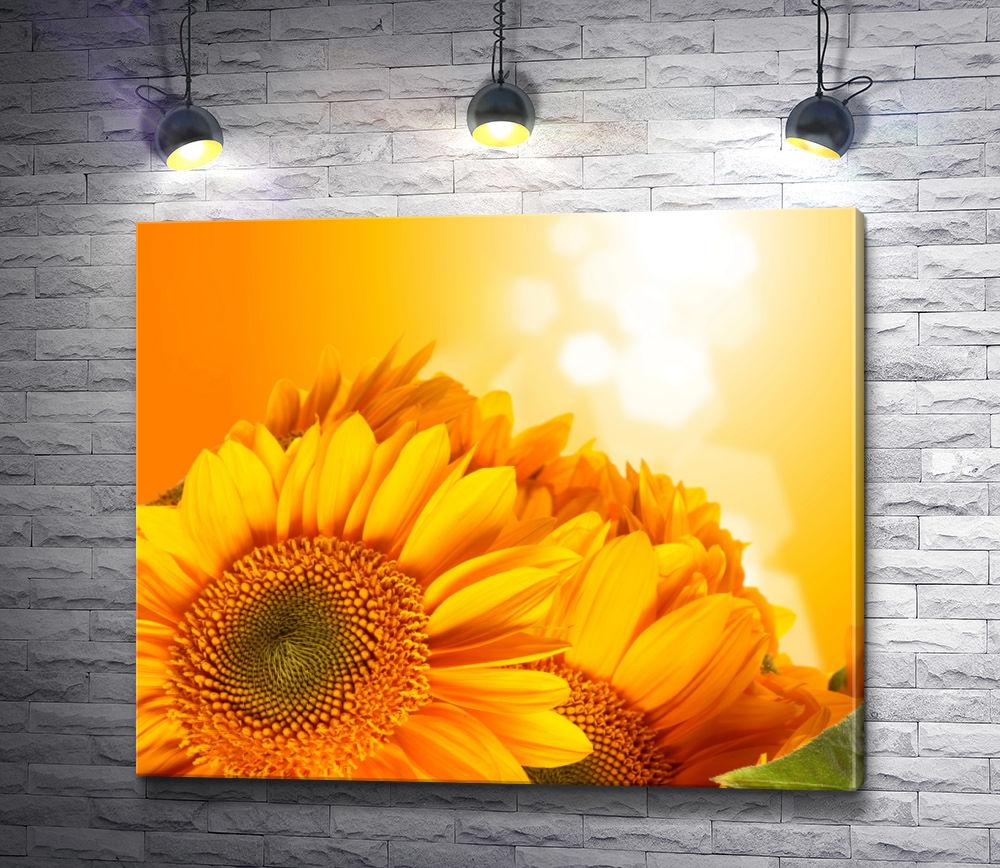 """Картина """"Желтая гербера в лучах солнца"""""""