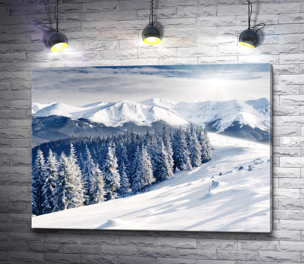 """Картина """"Заснеженный лес на вершине горы """""""