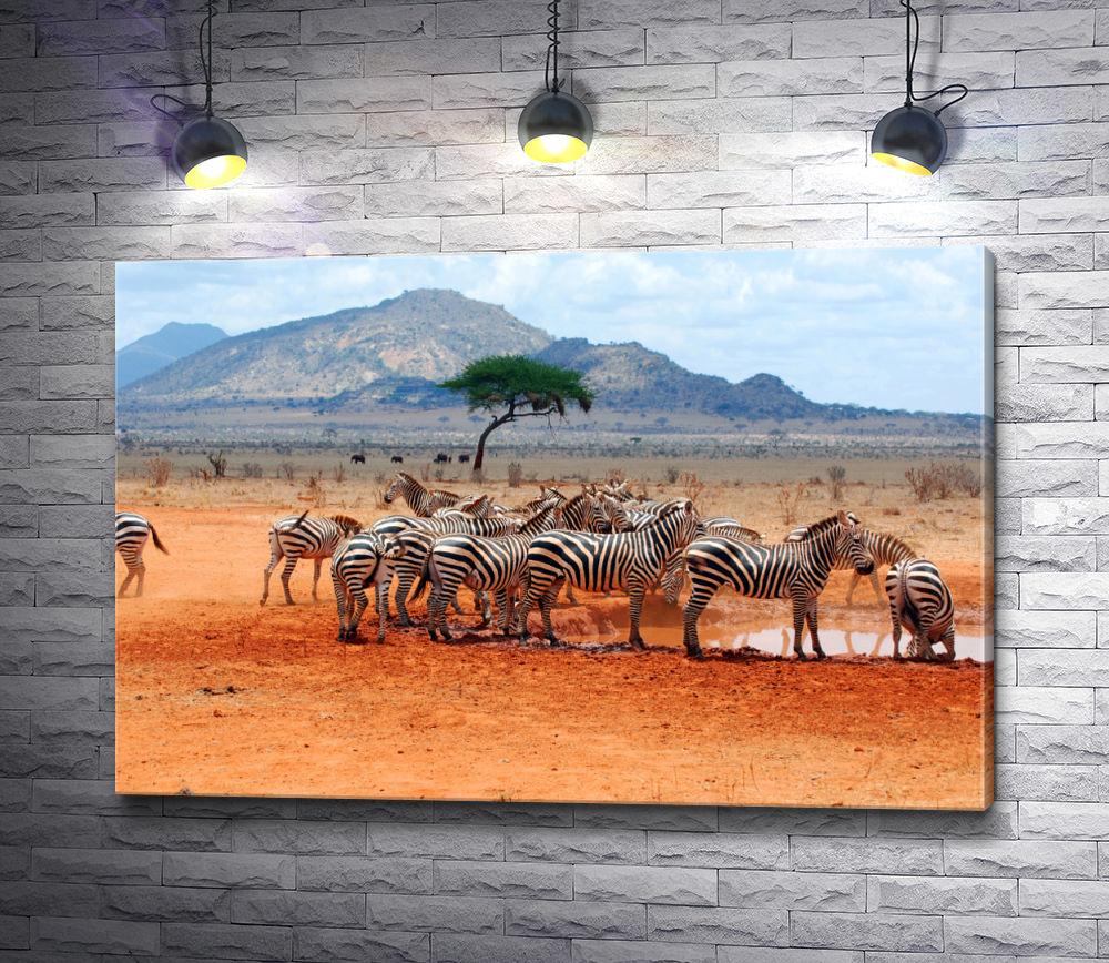 "Картина ""Зебры у водопоя на фоне горы"""