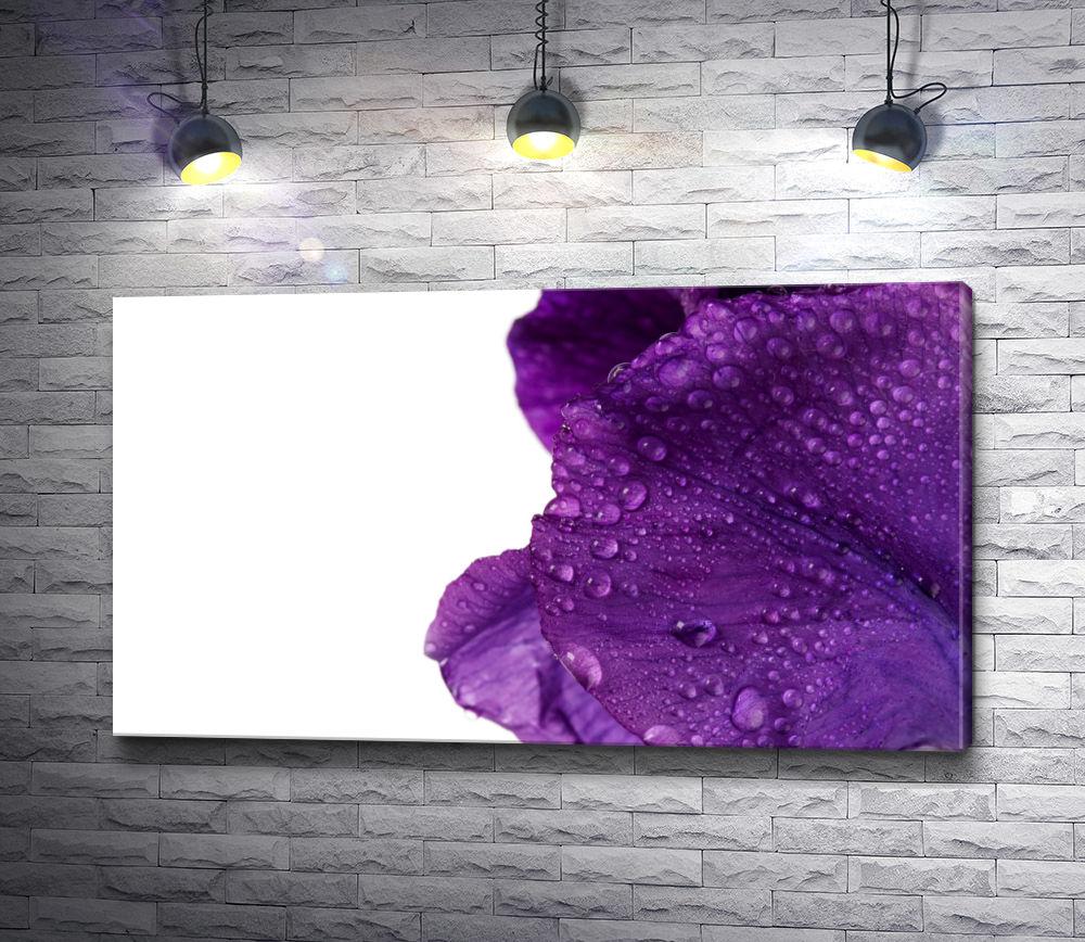 """Картина """"Пурпурные лепестки в капельках росы"""""""