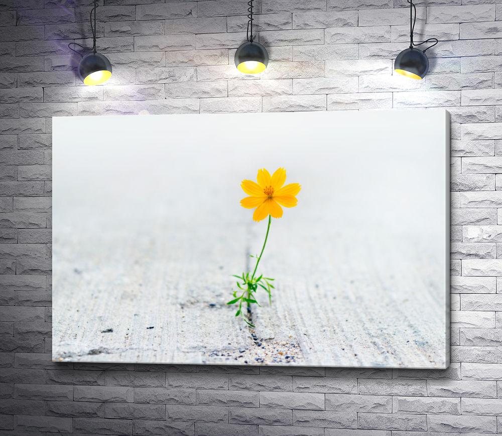 """Картина """"Желтый изящный цветок"""""""