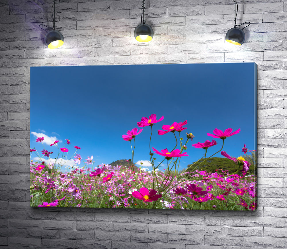 """Картина """"Дикие цветы на фоне безоблачного неба"""""""