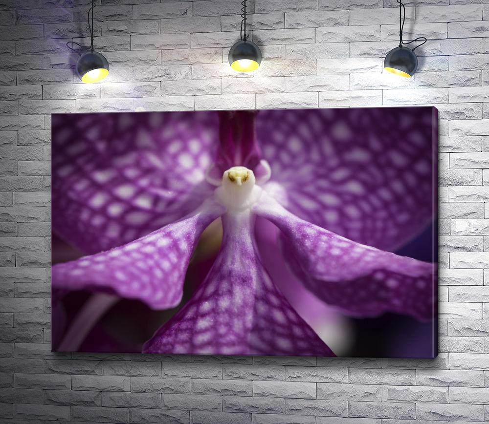 """Картина """"Красочный цветок фиолетового цвета. Макросъемка. """""""
