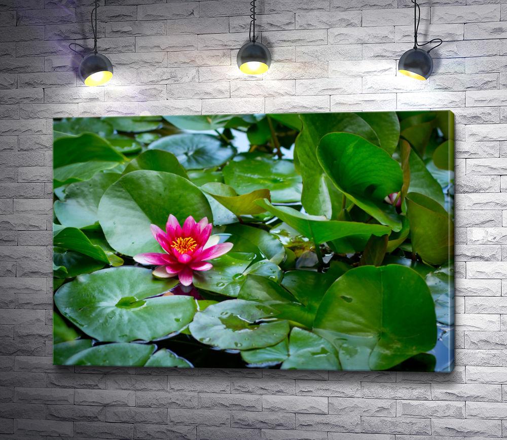 """Картина """"Малиновый цветок лотоса в пруде """""""