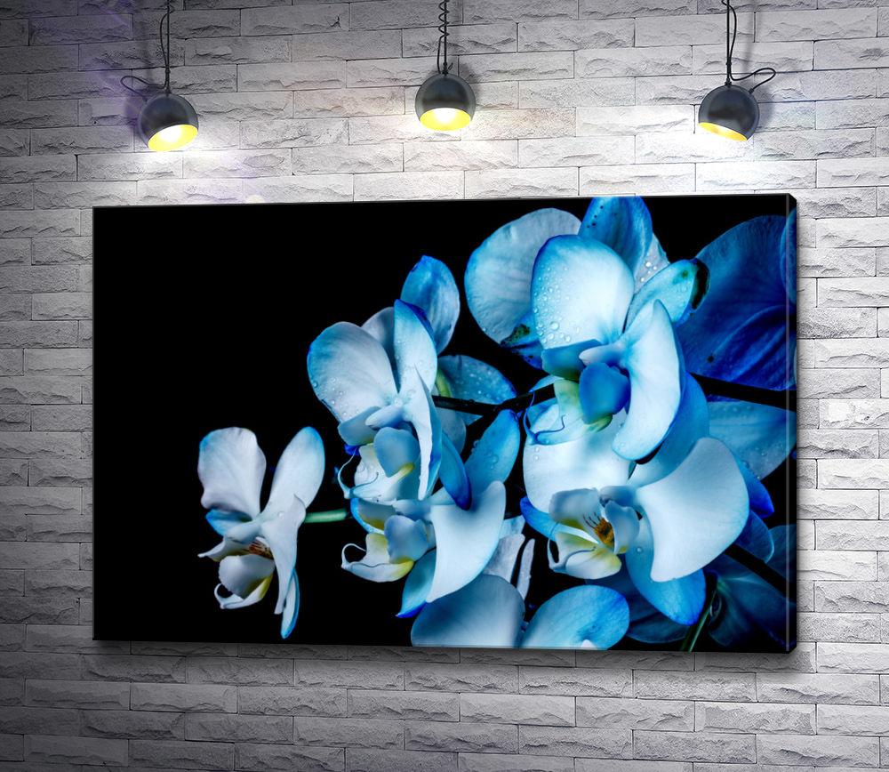 """Картина """"Синие орхидеи"""""""