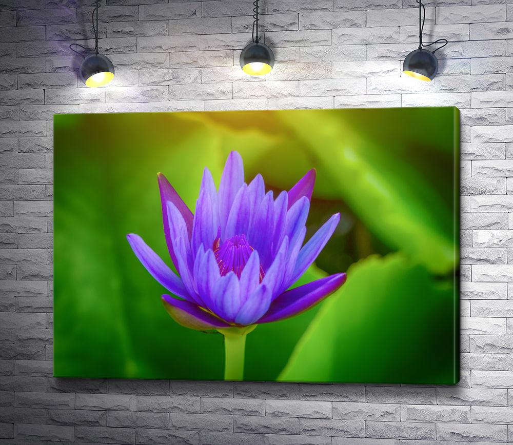 """Картина """"Фиолетовый цветок"""""""