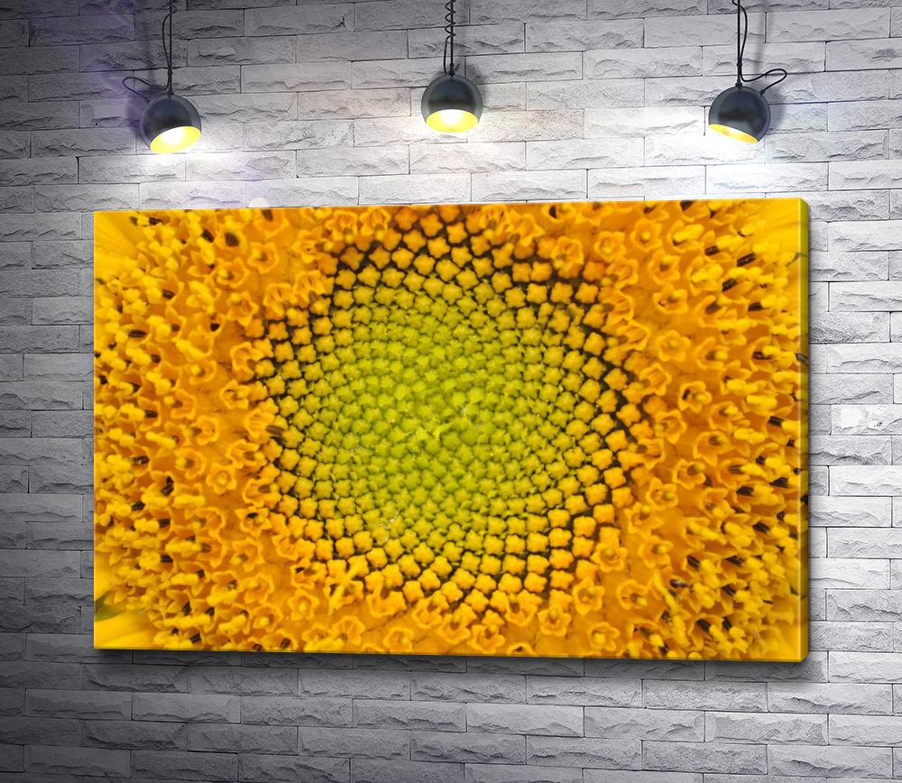 "Картина ""Лоно цветка"""