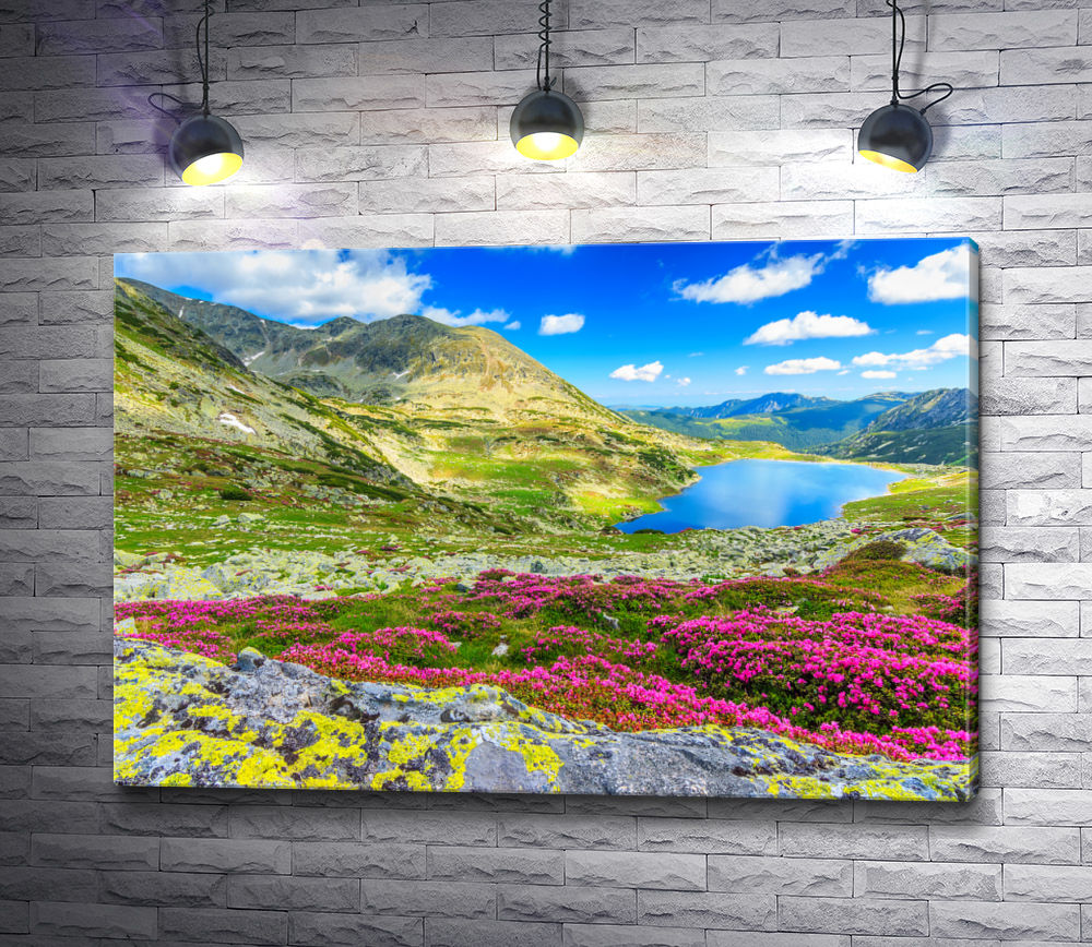 """Картина """"Горный пейзаж.  Вид на горы Ретезат,  Румыния. """""""