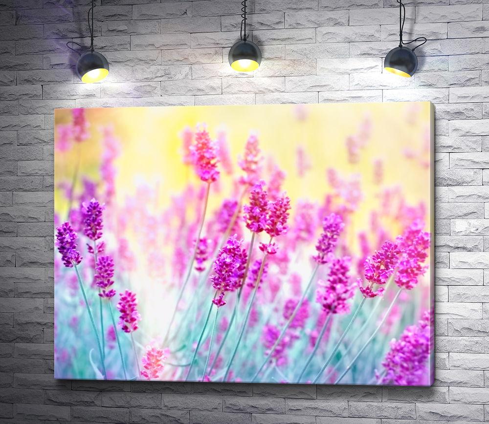 """Картина """"Розовые полевые цветы"""""""