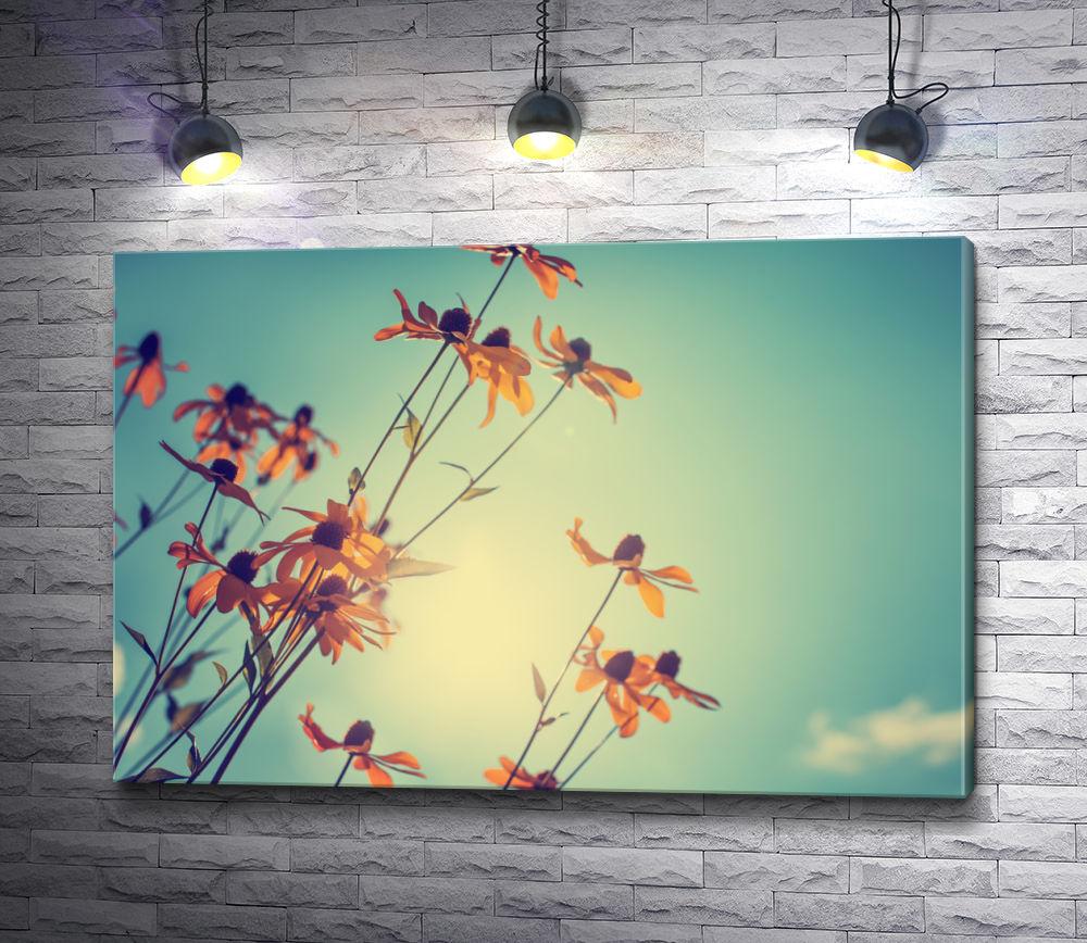 """Картина """"Полевые цветы на фоне неба """""""