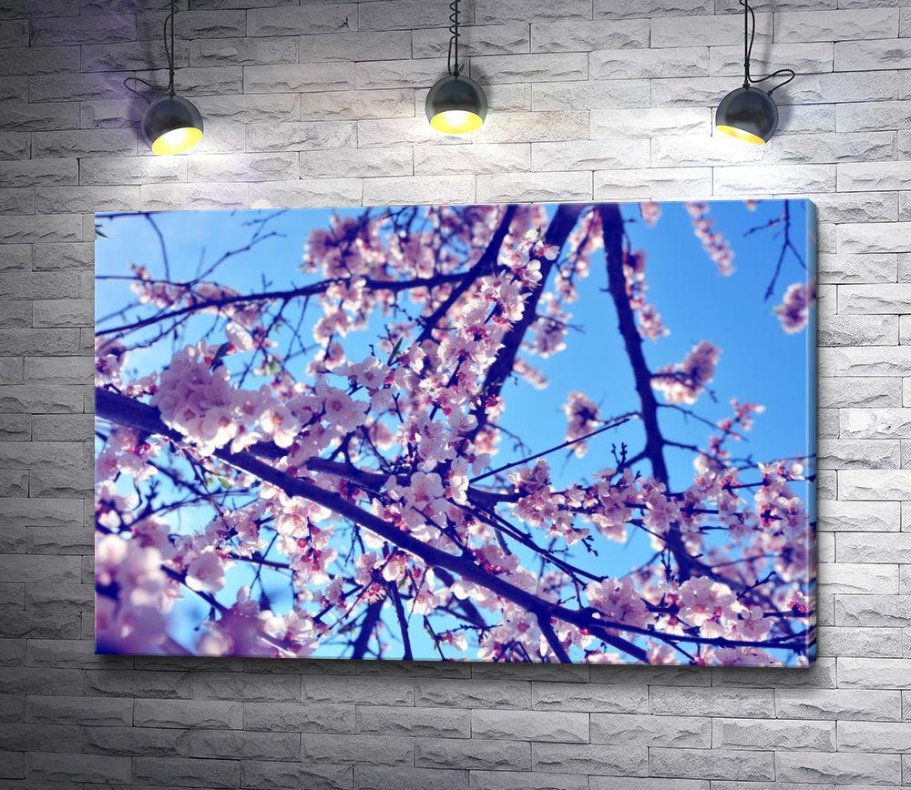 "Картина ""Ветка цветущего дерева"""