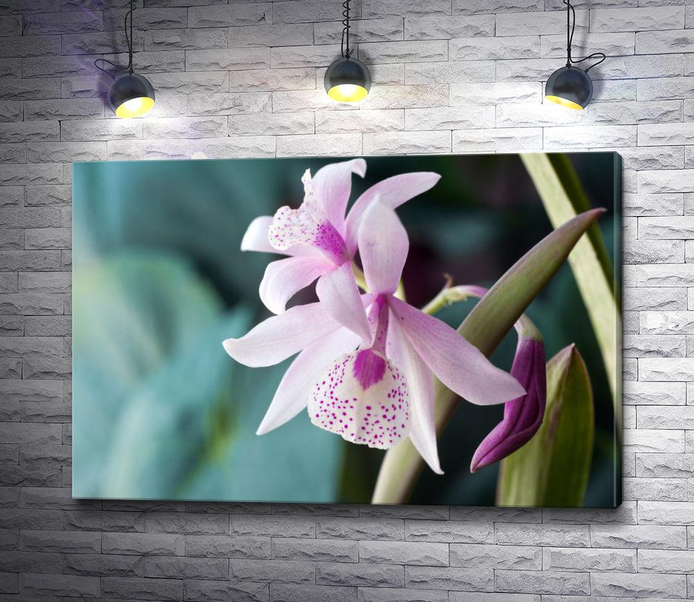 """Картина """"Сиреневая орхидея"""""""