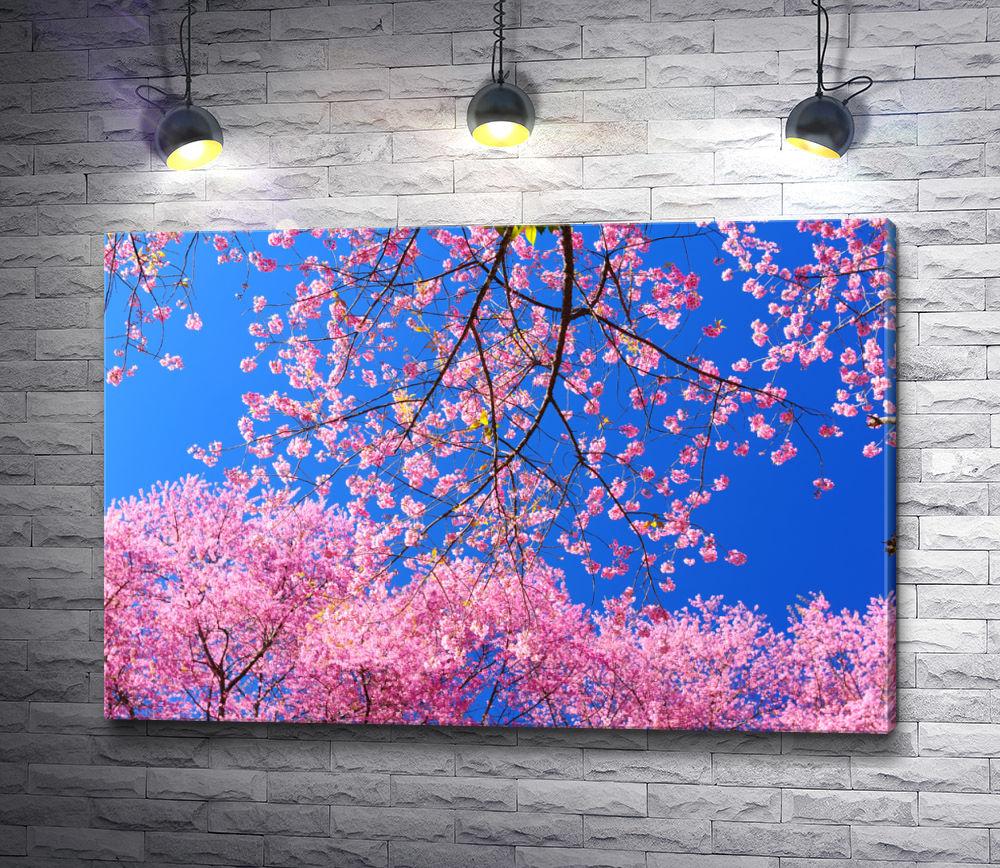 """Картина """"Завораживающее цветение сакуры """""""