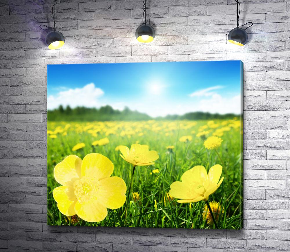 """Картина """"Зеленое поле в желтых цветах """""""