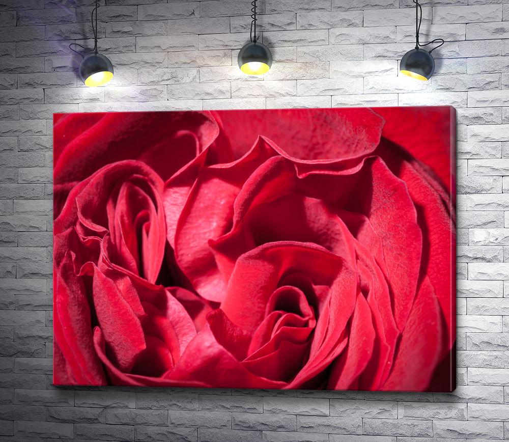 """Картина """"Чайные розы алого цвета """""""