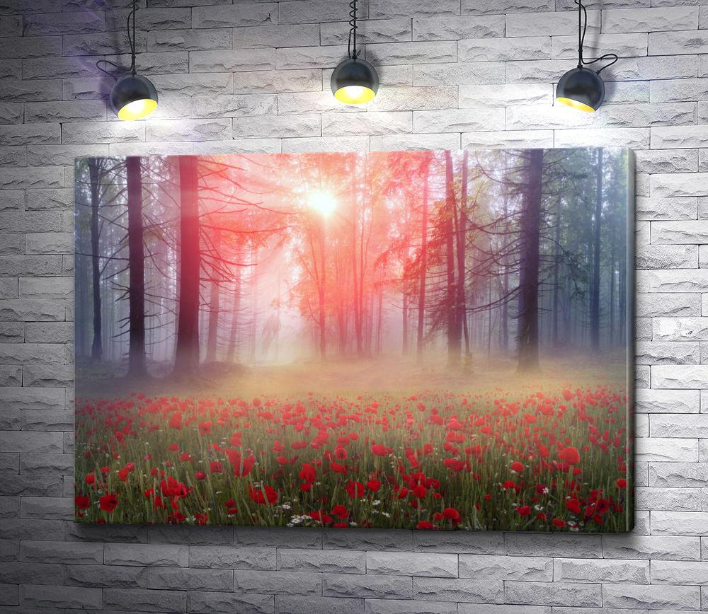 """Картина """"Поляна цветущих маков ранним утром в лесу """""""