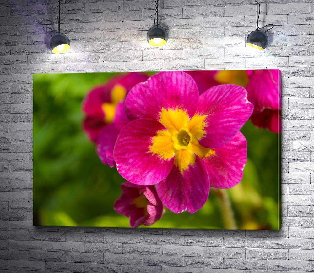 """Картина """"Малиновый цветок с желтой сердцевиной"""""""