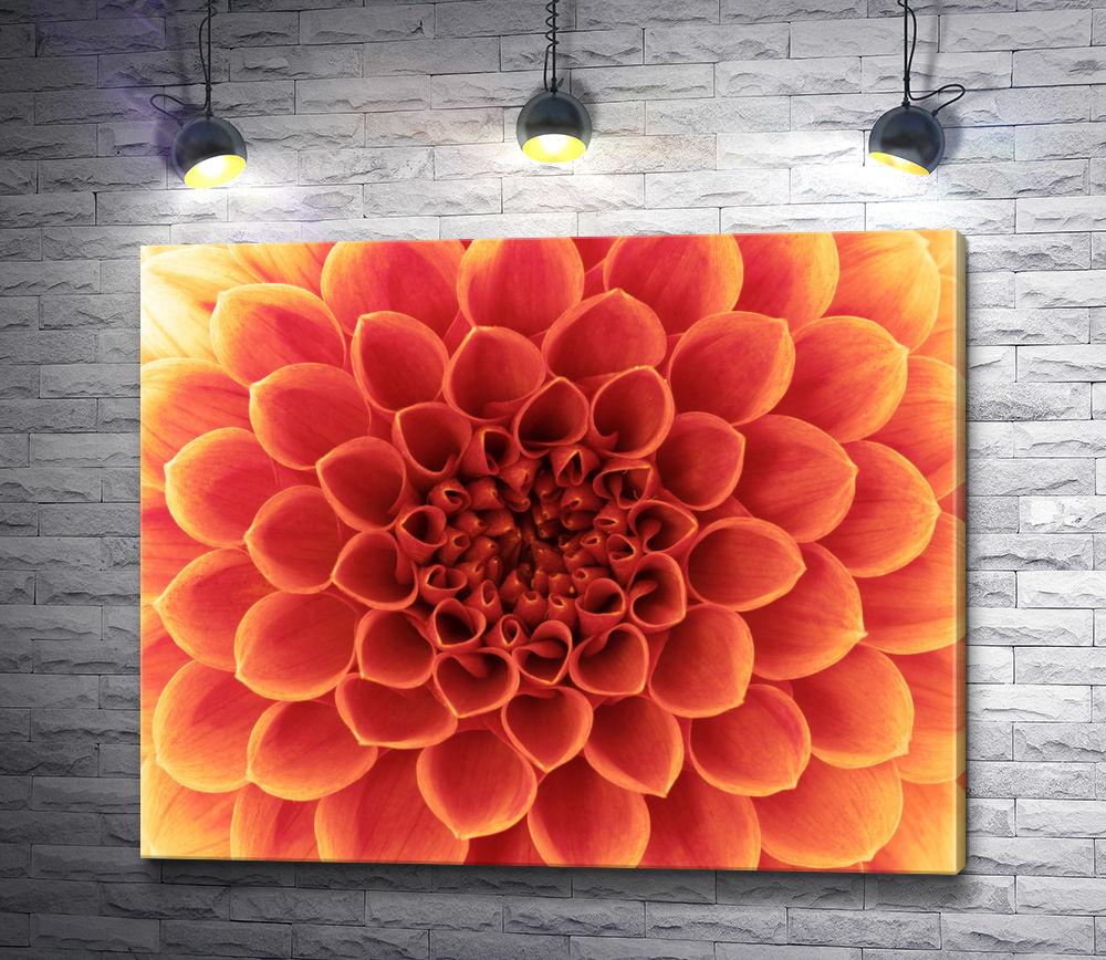 """Картина """"Оранжевая хризантема. Макросъемка"""""""