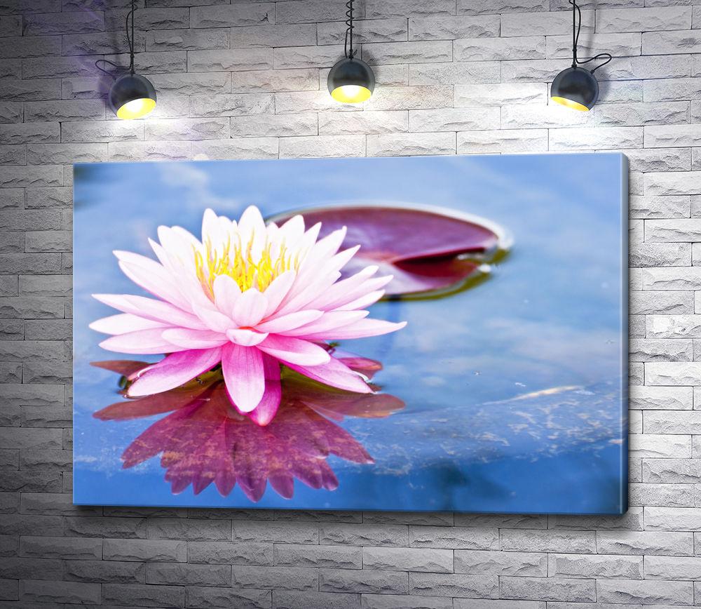 "Картина ""Нежный цветок лотоса на водной глади"""