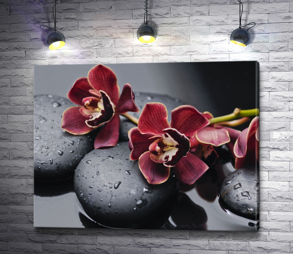 "Картина ""Бордовые орхидеи на спа камнях"""