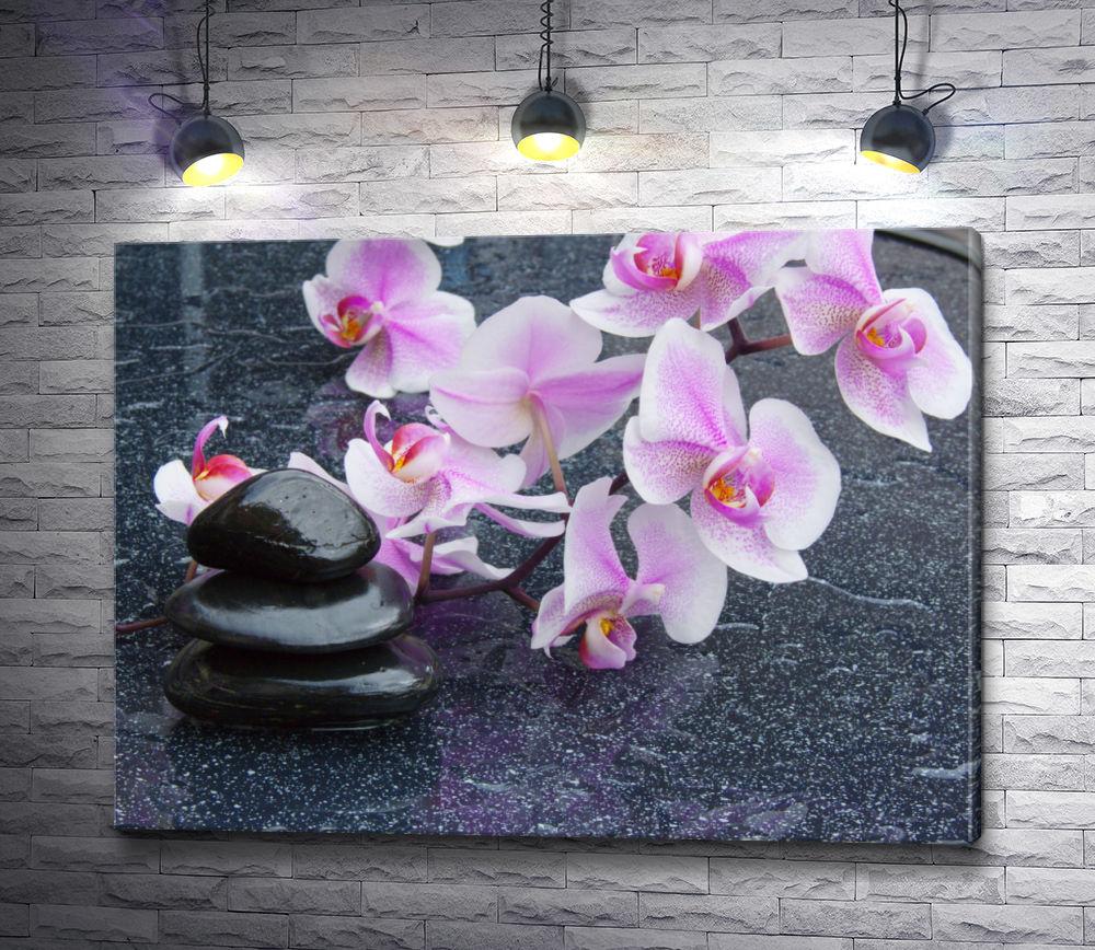 "Картина ""Сиреневые орхидеи и камни спа"""