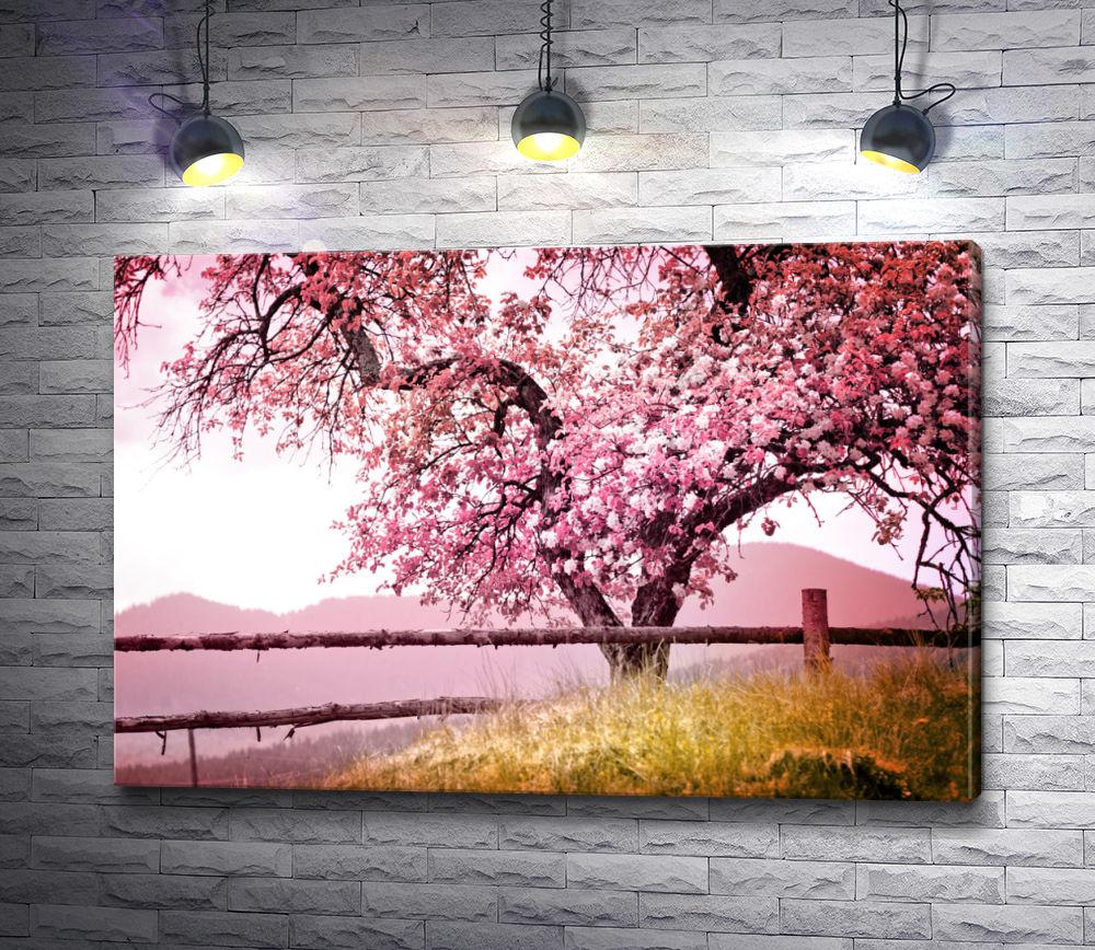 """Картина """"Цветущая розовая сакура у заборчика"""""""