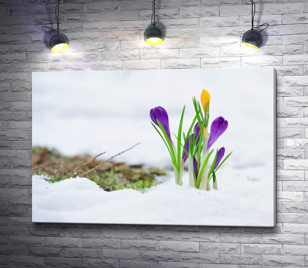 """Картина """"Первоцветы на снегу"""""""