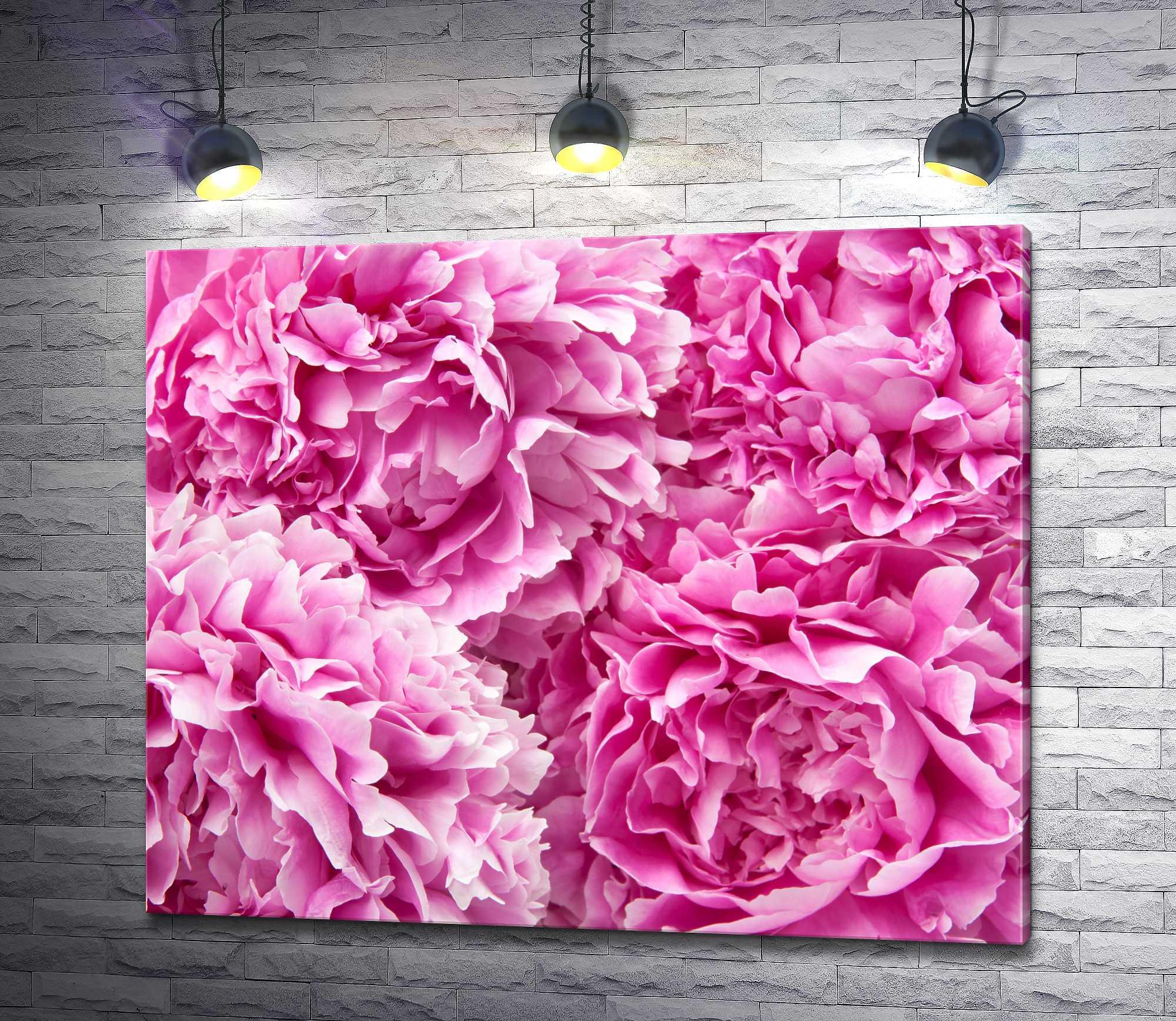 """Картина """"Бутоны розовых пионов"""""""