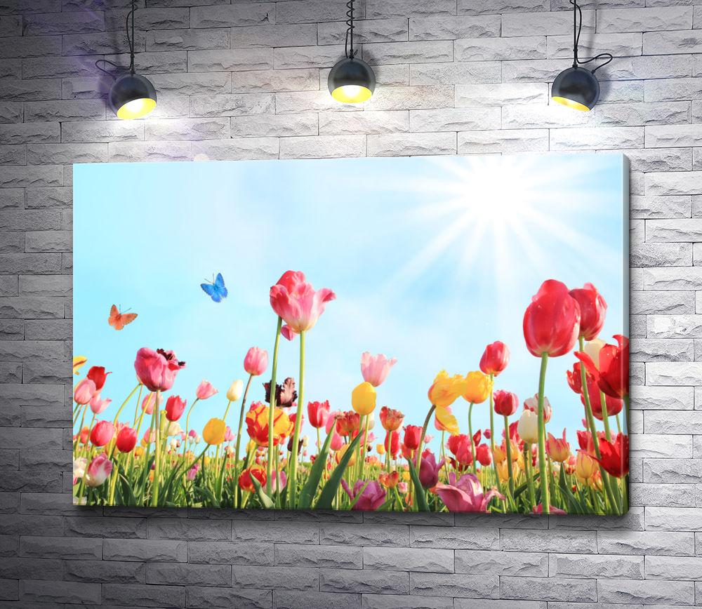 "Картина ""Маковое поле и бабочка"""