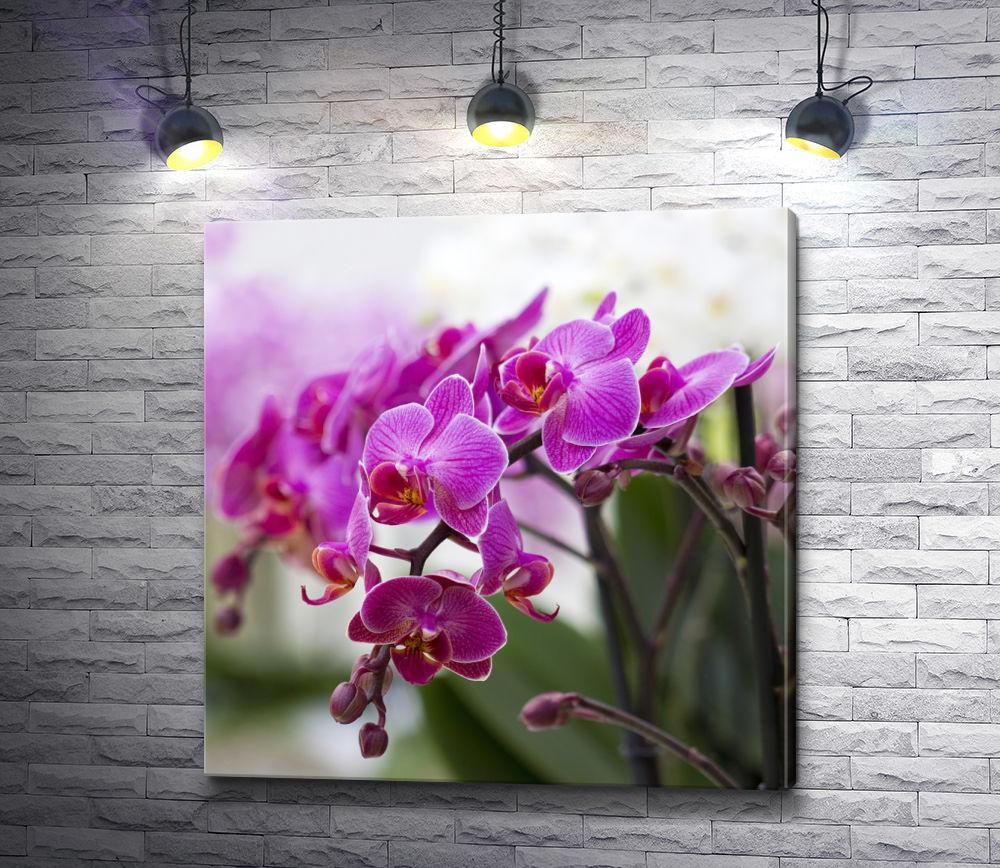 """Картина """"Сиреневые орхидеи"""""""