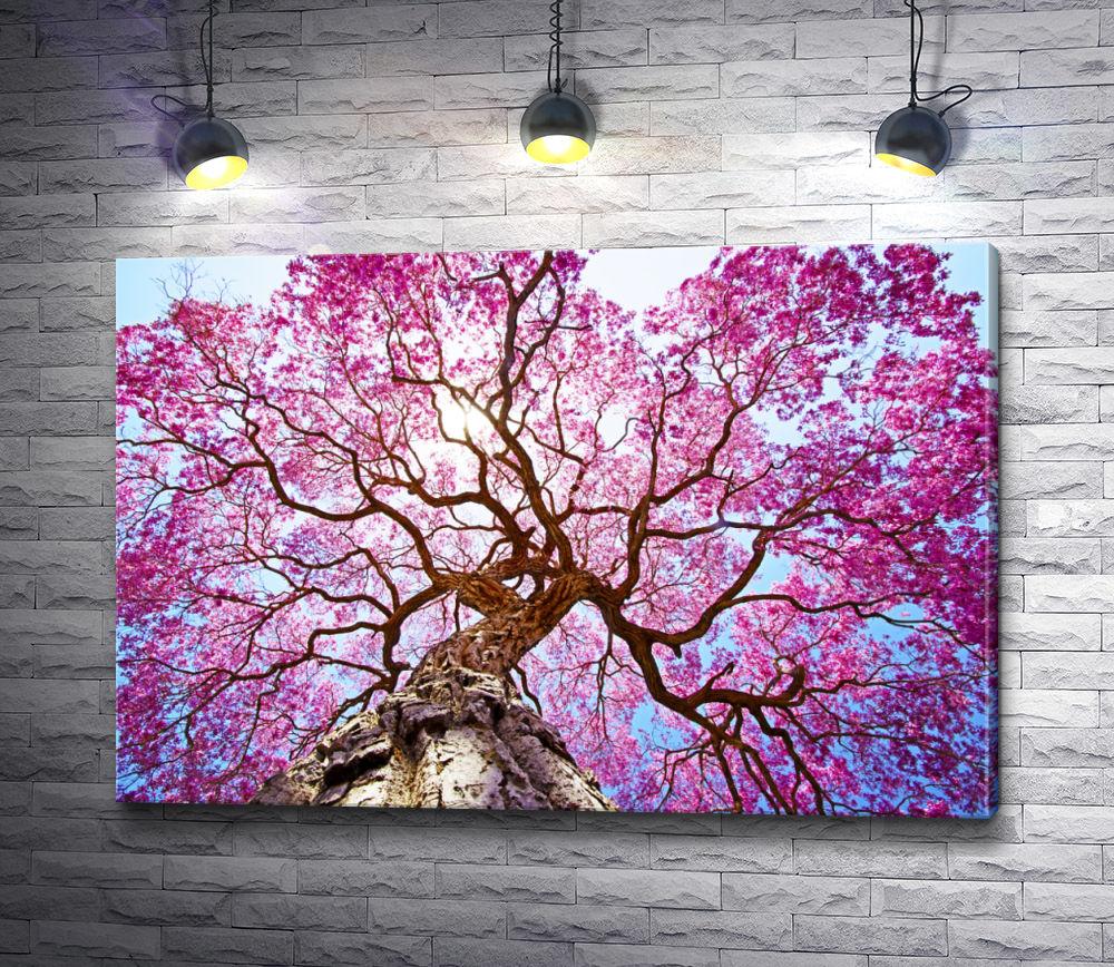 """Картина """"Крона цветущей сакуры"""""""
