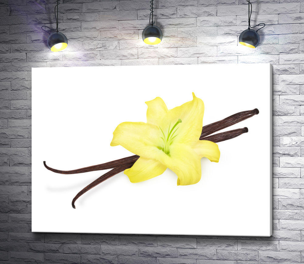 """Картина """"Желтая орхидея и ваниль"""""""