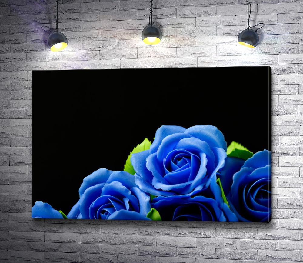"""Картина """"Голубые розы на черном фоне"""""""