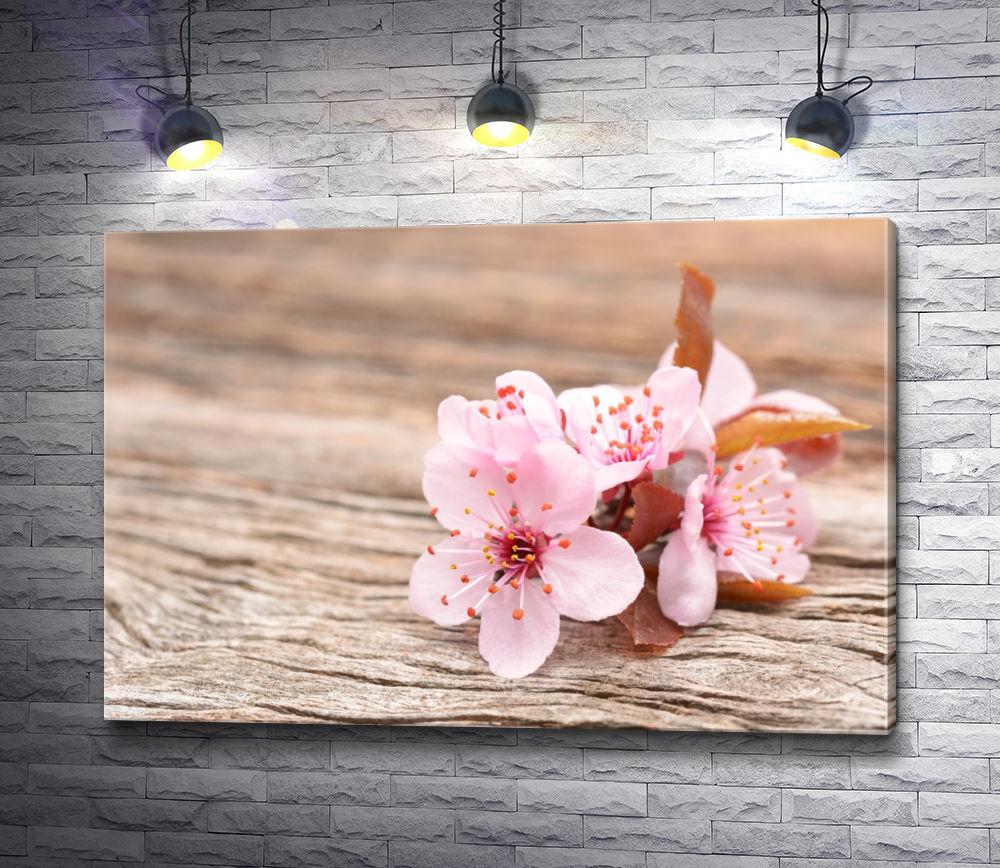 """Картина """"Цветы вишни на деревянном столе"""""""