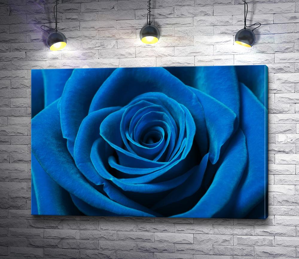 """Картина """"Красивый бутон голубой розы"""""""