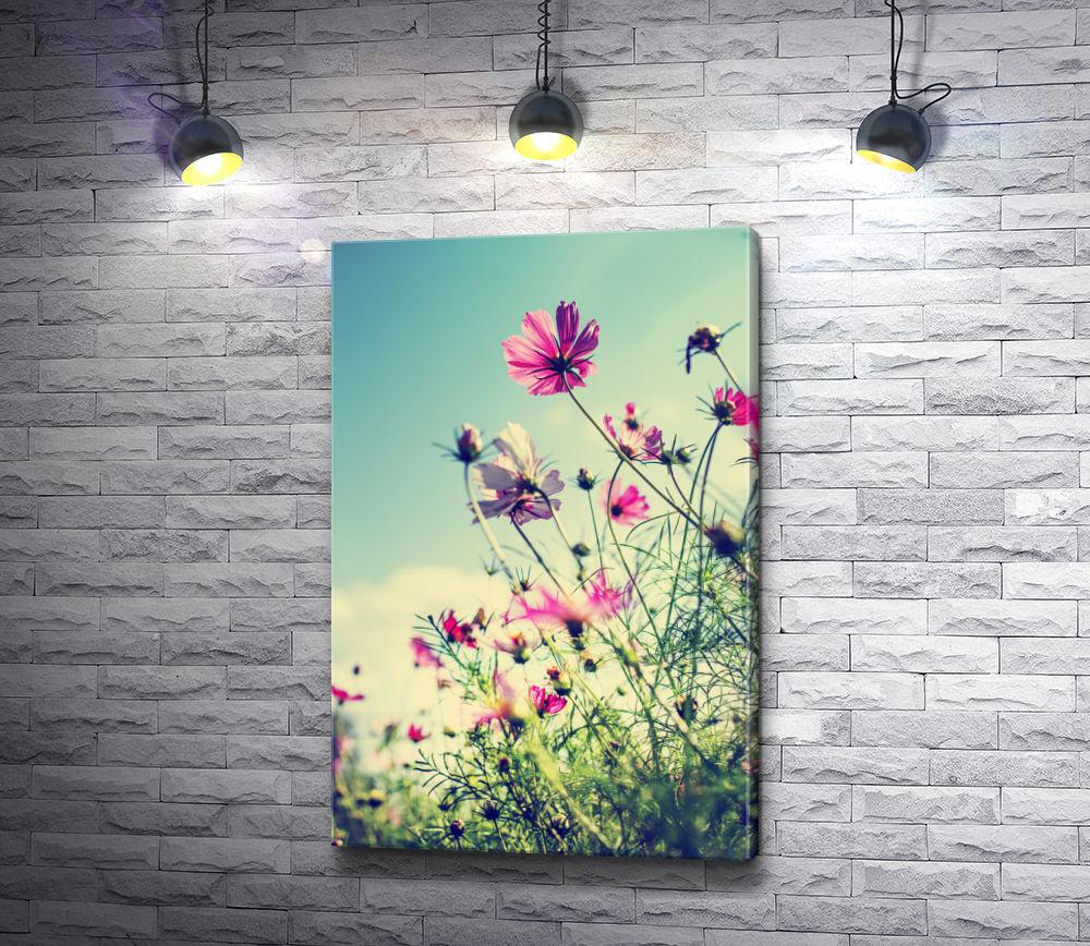 """Картина """"Цветы летом на лугу"""""""
