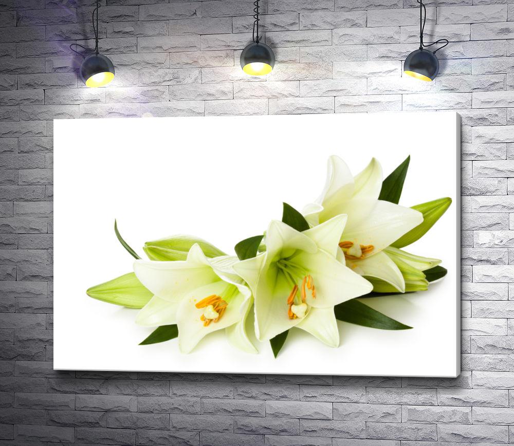 "Картина ""Три белых лилии"""