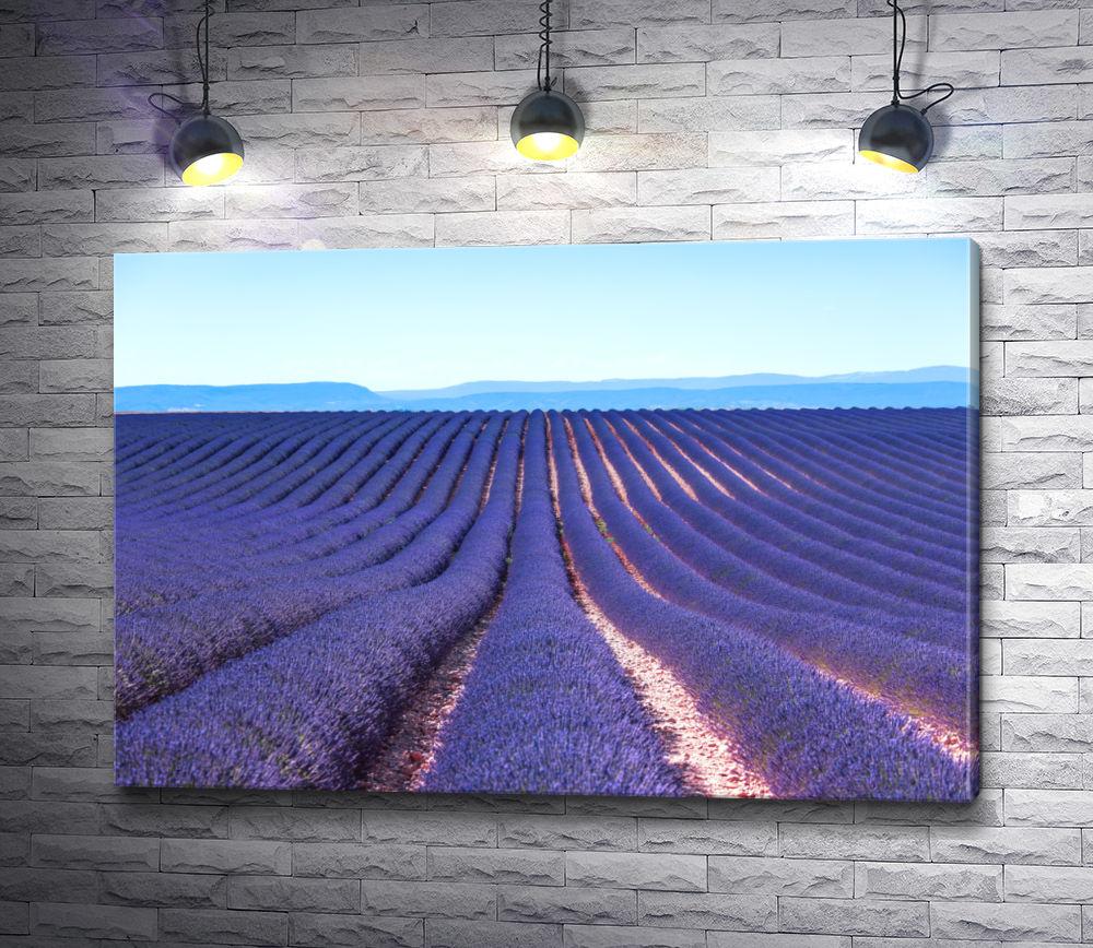 """Картина """"Пейзаж с лавандовым полем в Провансе"""""""